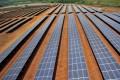 A napelempark első részét 174 nap alatt építették meg Forrás: AFP/Aizar Raldes